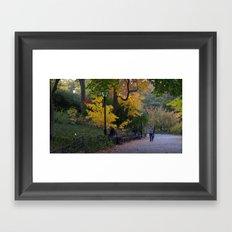 Central Park Fall Series 4 Framed Art Print
