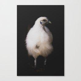 The Chicken Canvas Print