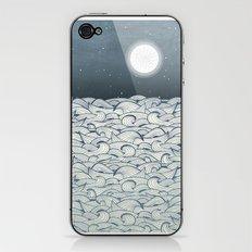 Bear Rock iPhone & iPod Skin