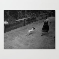 Running with Skippy Canvas Print