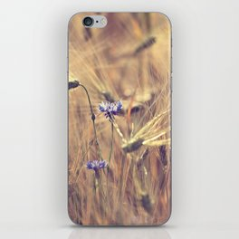 Corn flower iPhone Skin