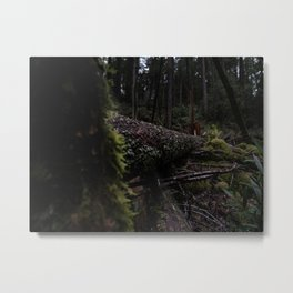 Tree fell in the forest. I didn't hear anything. Metal Print