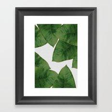 Banana Leaf II Framed Art Print