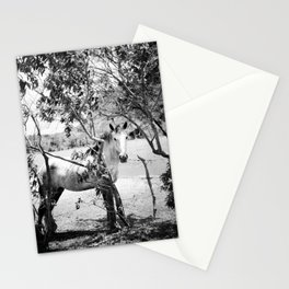 Eye contact, Soul contact Stationery Cards