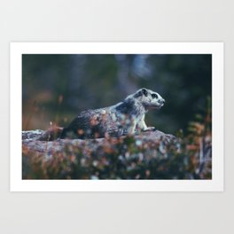 In The Wild Art Print