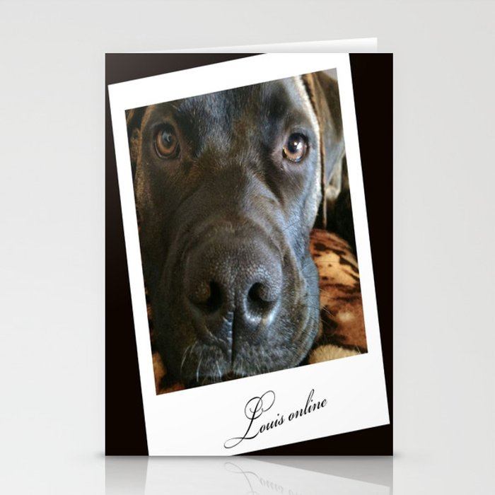 Louis online Stationery Cards