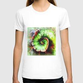 Begonia 'Princess of Hanover' T-shirt