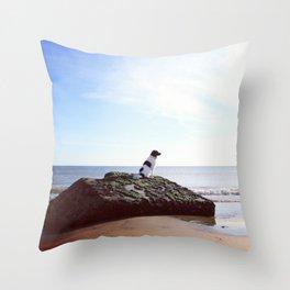 Serie #uneviedechien // 11/20 Throw Pillow