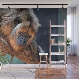 Balck and Gold Howler Monkey Wall Mural