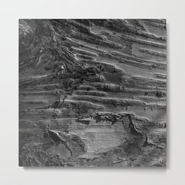 Silver Birch Bark by Teresa Thompson Metal Print