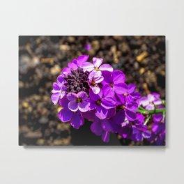 Purple Flower. Metal Print