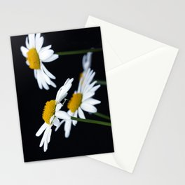 Marquerite Stationery Cards