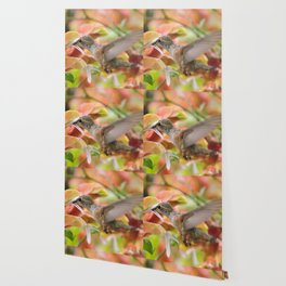 Little Ms. Hummingbird in for More Licks Wallpaper