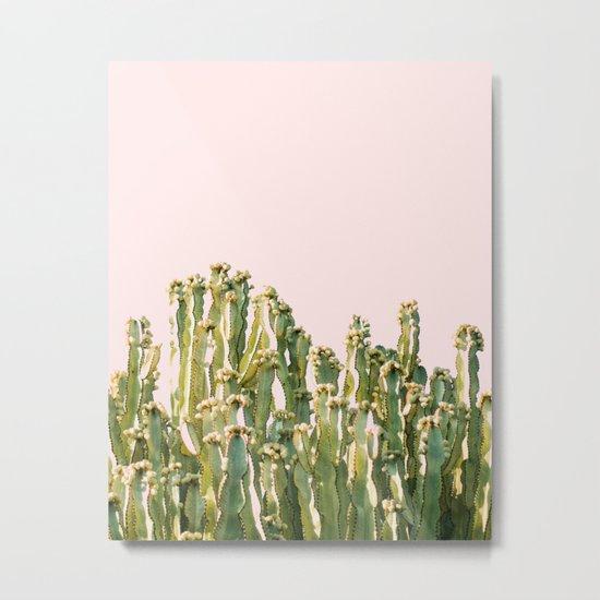 Cactus Blush #society6 #decor #buyart Metal Print