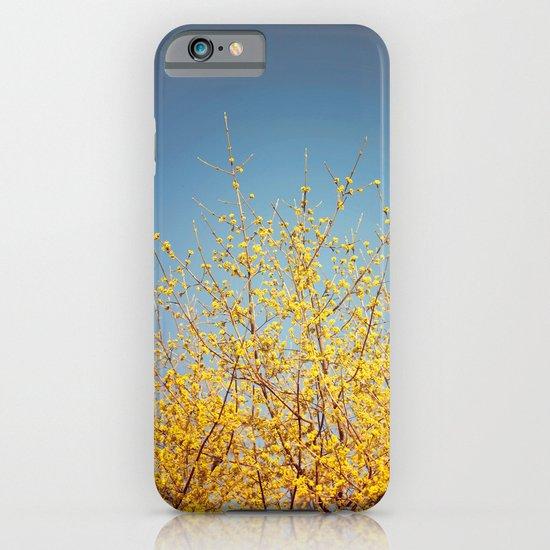 BRING ON THE SUNSHINE iPhone & iPod Case
