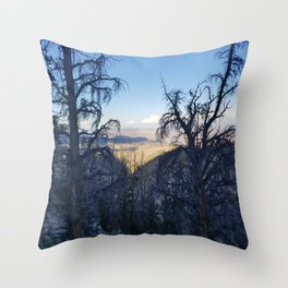 Ancient Bristlecone Pine Forest #1 Throw Pillow