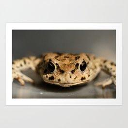 Kiss That Frog Art Print