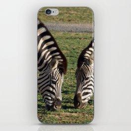 2 Zebras iPhone Skin