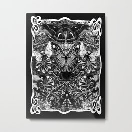 Black and White Art Nouveau Moths and Honeysuckle Metal Print