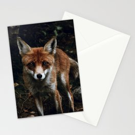 Curious Fox II Stationery Cards