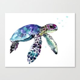 Sea Turtle, Baby Turtle animal artwork for children Canvas Print