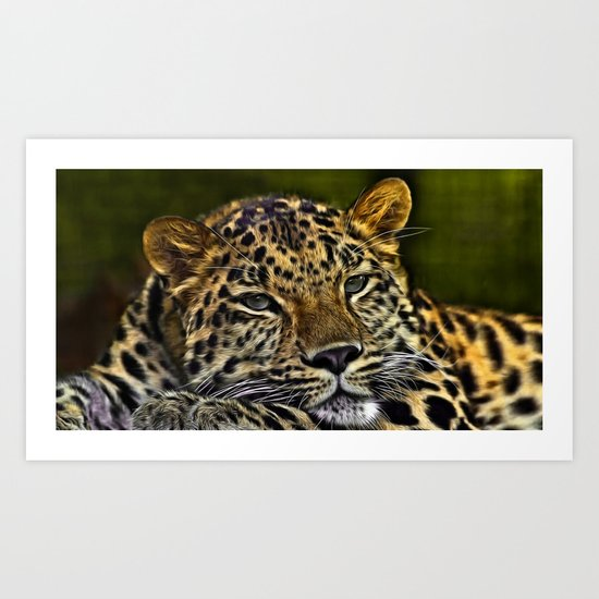 Amur Leopard Looking PrettyRelaxed  Art Print