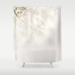 Sparkling dandelion seed head with droplet Shower Curtain