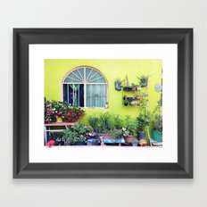 Mexican Yard Framed Art Print