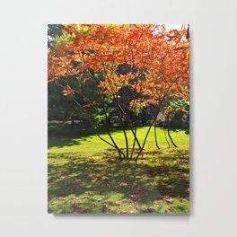 Young Japanese Rowans Metal Print