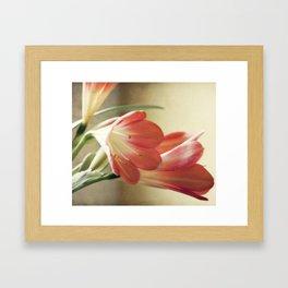 Waiting for spring Framed Art Print