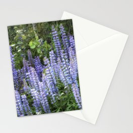 Lupins in Blue and Purple Stationery Cards