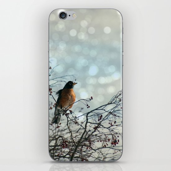 The Lookout iPhone & iPod Skin