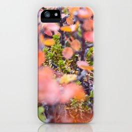 Colorful twigs iPhone Case