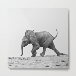 A Cute Baby Elephant Running Metal Print