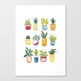Sixteen Pot Plants Canvas Print