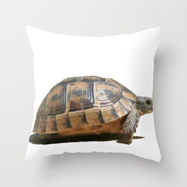 Sideview of A Walking Turkish Tortoise Isolated Throw Pillow