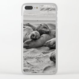 Sleeping Sea Lions Clear iPhone Case