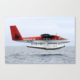Skimming the surface Canvas Print