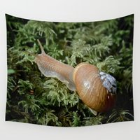 oregon Wall Tapestries featuring Oregon Forestsnail by A Wandering Soul