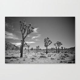 Desert Landscape 2 Canvas Print