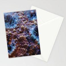 Acanthastrea Echinata Macro Stationery Cards