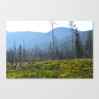 montana Canvas Prints featuring Montana by MelissaLaDouxPhoto