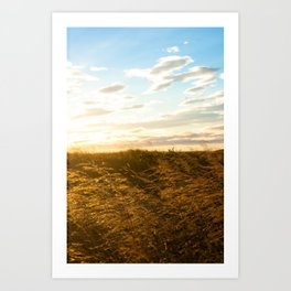 100823.002 Art Print