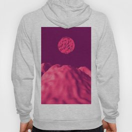 Martian Sunset Hoody
