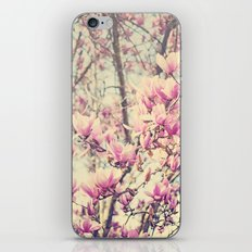 Magnolia Blossoms Early Spring Botanical iPhone & iPod Skin