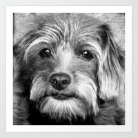 coco Art Prints featuring COCO by KarenHarveyCox