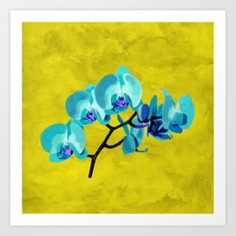 Orchid flower blue Art Print