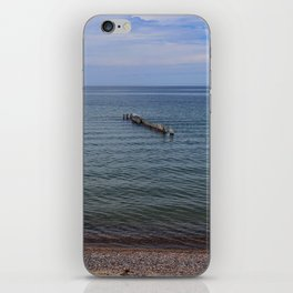 Personal Assets iPhone Skin