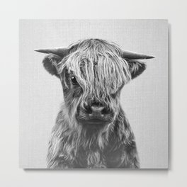 Highland Calf - Black & White Metal Print