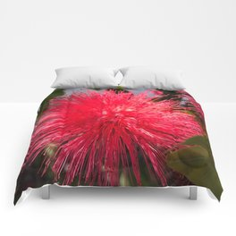 Bottlebrush Comforters